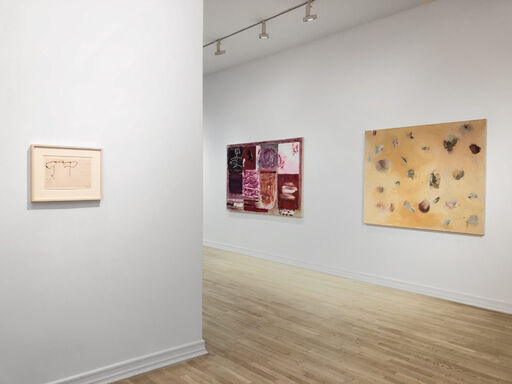 An installation view consisting of a Kieth Sonnier study for the sculpture Neon Wrapping Incandescent, and Joan Snyder's Tone Poem and Flock Painting of Women.