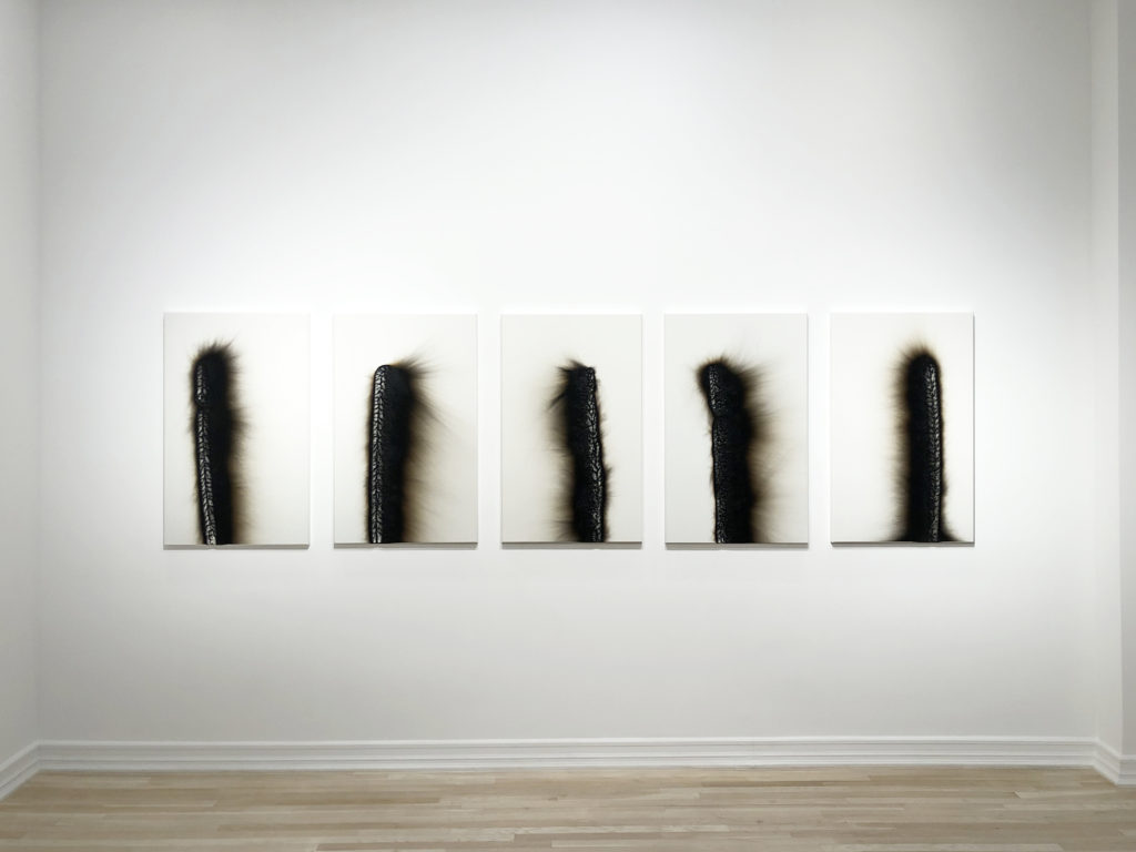An installation view of five Charles Ross solar burns. Titled Personages, these works were created using a large magnifying lens to burn sunlight onto prepared wooden panels.
