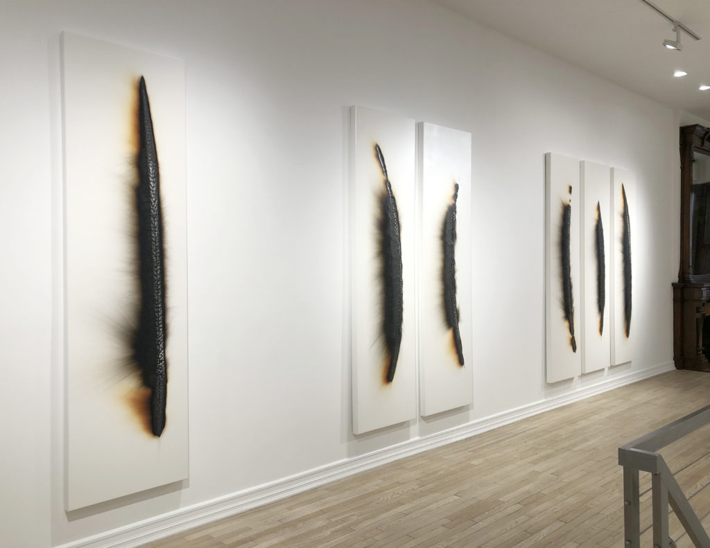 An installation view of six human-size Charles Ross solar burns, displayed in groups of one, two, and three. These works were created using a magnifying lens to burn sunlight onto prepared wooden panels.